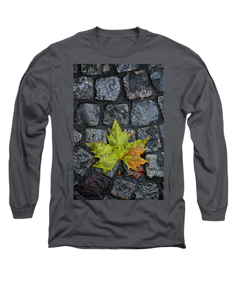 Nature Long Sleeve T-Shirt featuring the photograph Deville by Skip Hunt