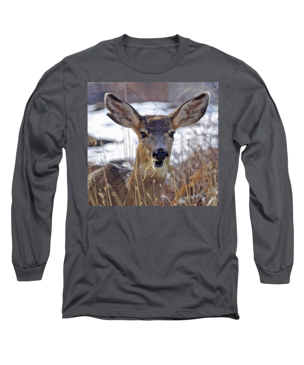 Doe Long Sleeve T-Shirt featuring the photograph Doe by Heather Coen