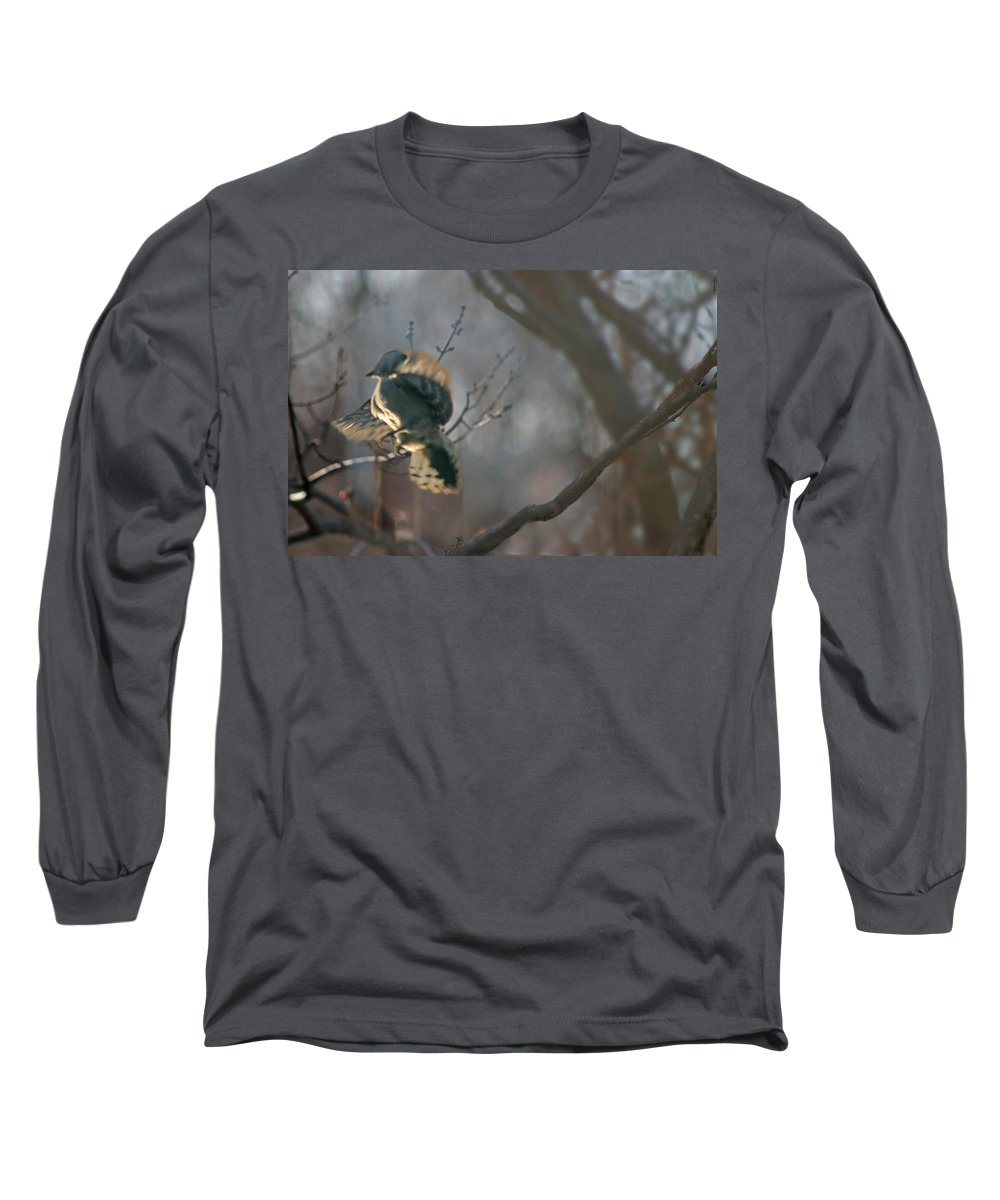 Nature Long Sleeve T-Shirt featuring the photograph Downey Woodpecker by Steve Karol