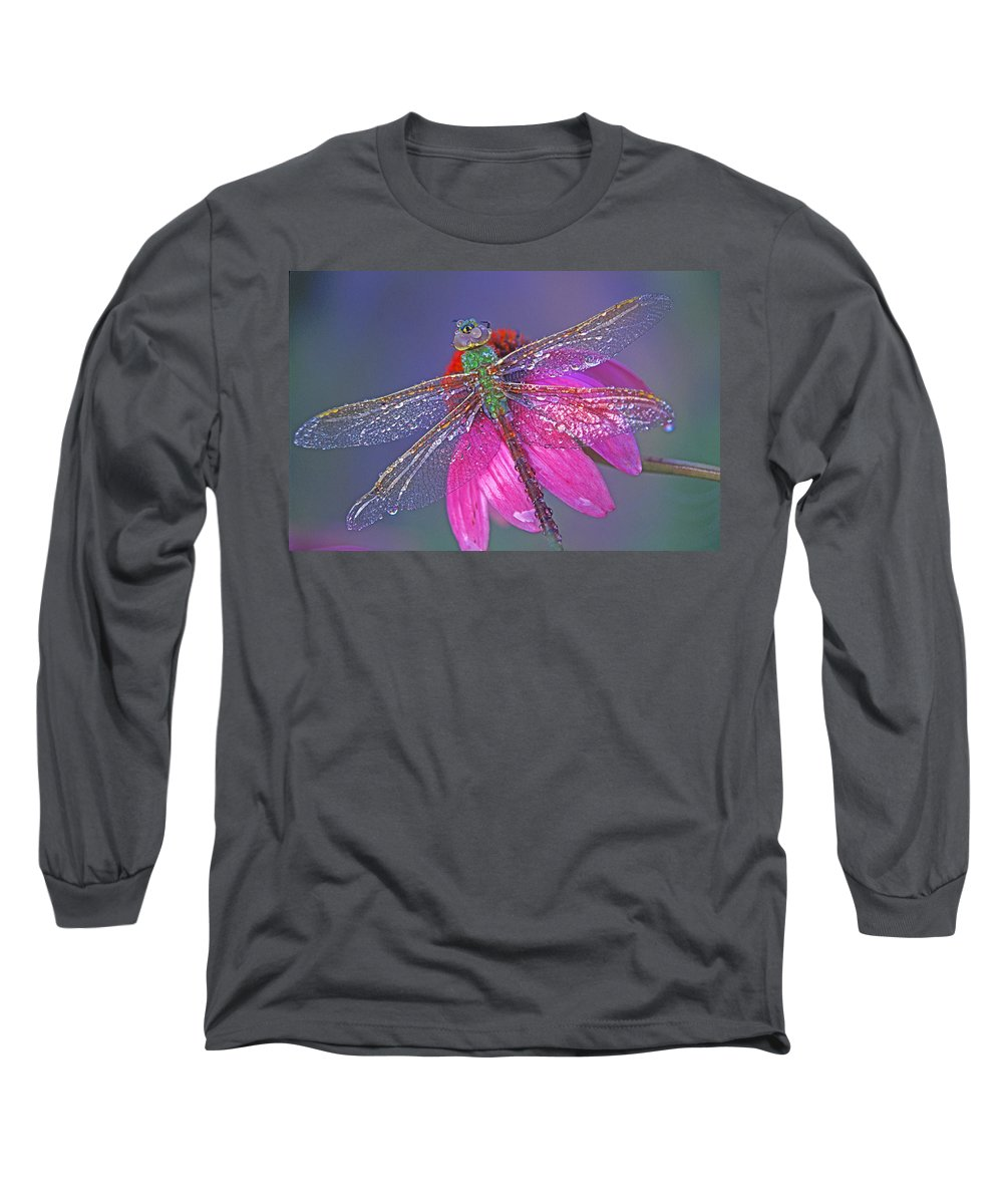 Dew Covered Dragonfly Rests On Purple Cone Flower Long Sleeve T-Shirt featuring the photograph Dreaming Dragon by Bill Morgenstern