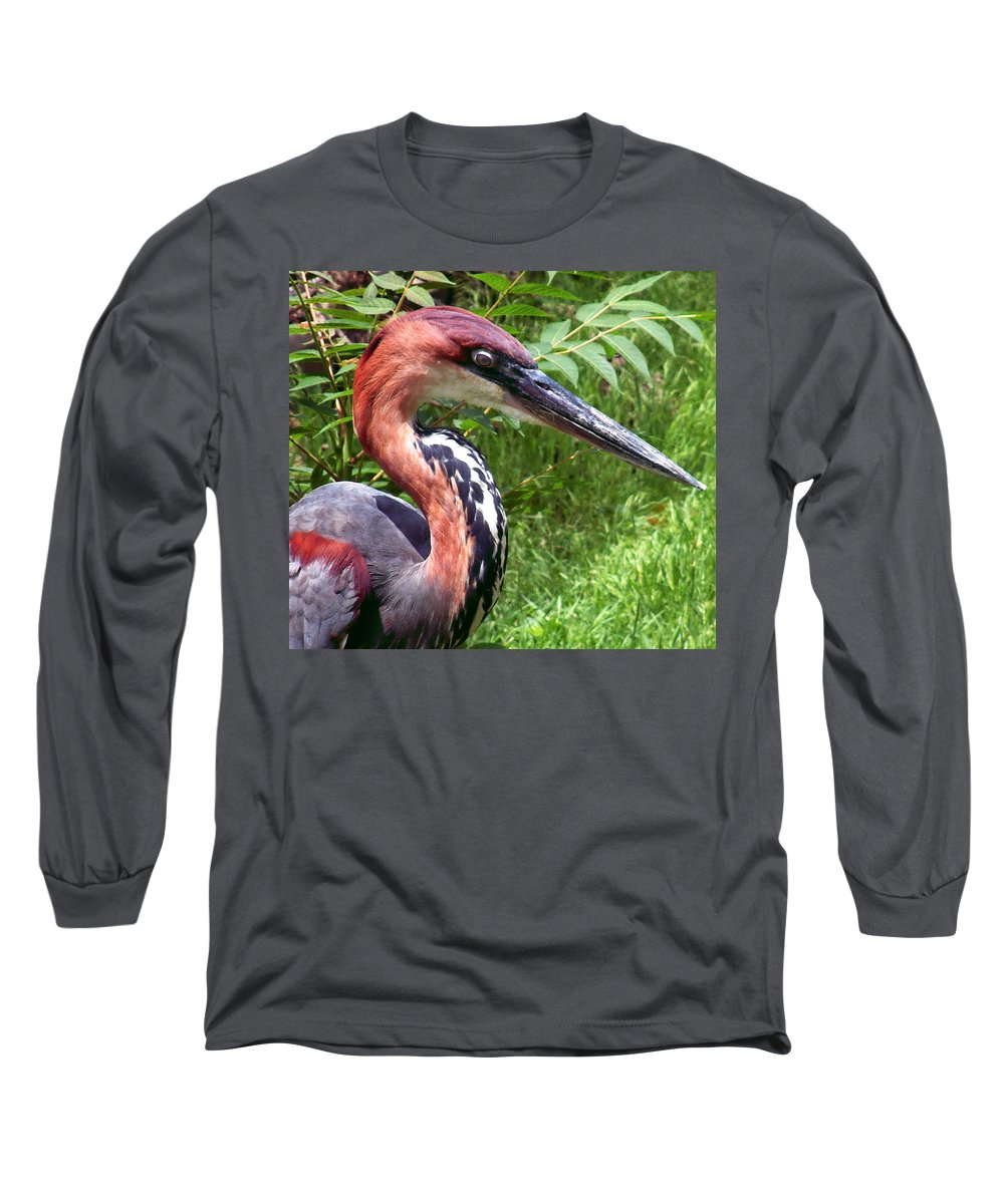 Bird Long Sleeve T-Shirt featuring the photograph Feeling A Bit Peckish by RC deWinter