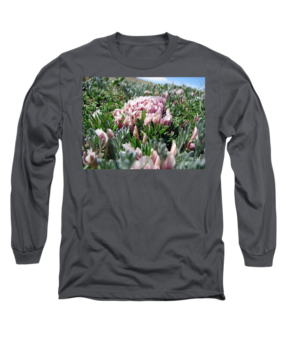 Flowers Long Sleeve T-Shirt featuring the photograph Flowers In The Alpine Tundra by Amanda Barcon