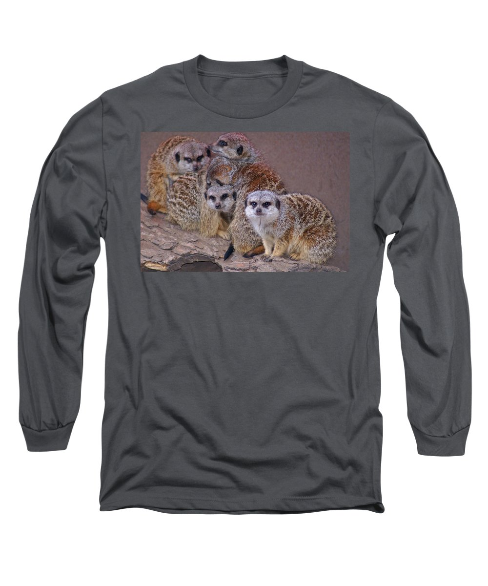 Mer Cats Long Sleeve T-Shirt featuring the photograph Freezing Meer Cats by Heather Coen