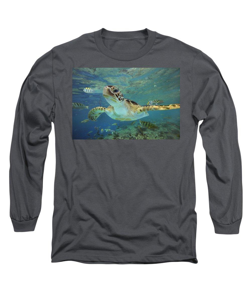 Mp Photographs Long Sleeve T-Shirts