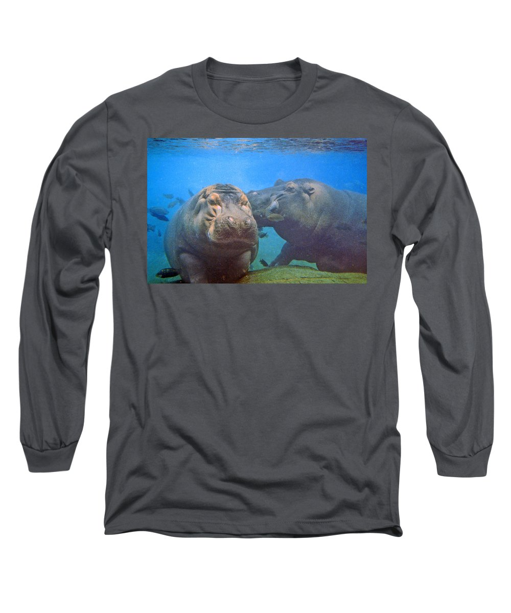 Animals Long Sleeve T-Shirt featuring the photograph Hippos In Love by Steve Karol