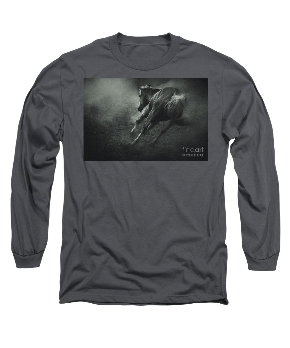 Equestrian Long Sleeve T-Shirt featuring the photograph Horse Trotting In Morning Fog by Dimitar Hristov
