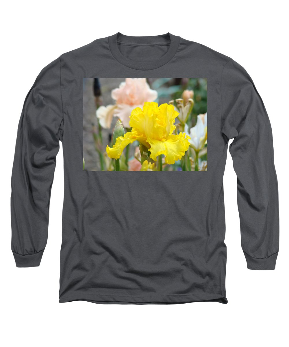 �irises Artwork� Long Sleeve T-Shirt featuring the photograph Irises Botanical Garden Yellow Iris Flowers Giclee Art Prints Baslee Troutman by Baslee Troutman