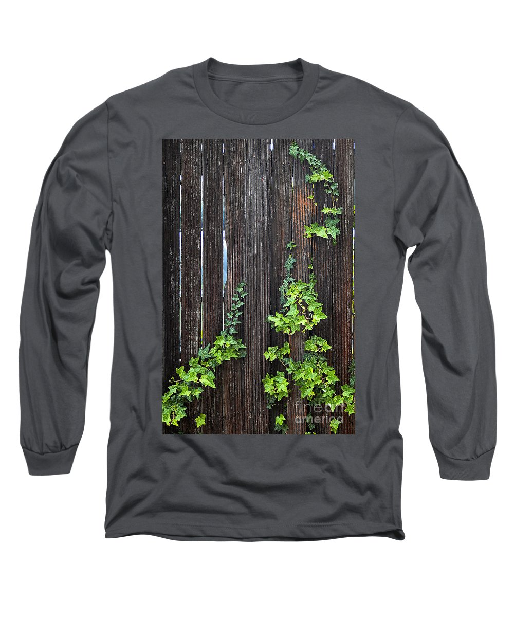 Clay Long Sleeve T-Shirt featuring the photograph Ivy On Fence by Clayton Bruster