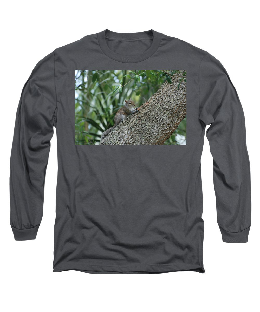 Squirrels Long Sleeve T-Shirt featuring the photograph Just Chilling Out by Rob Hans