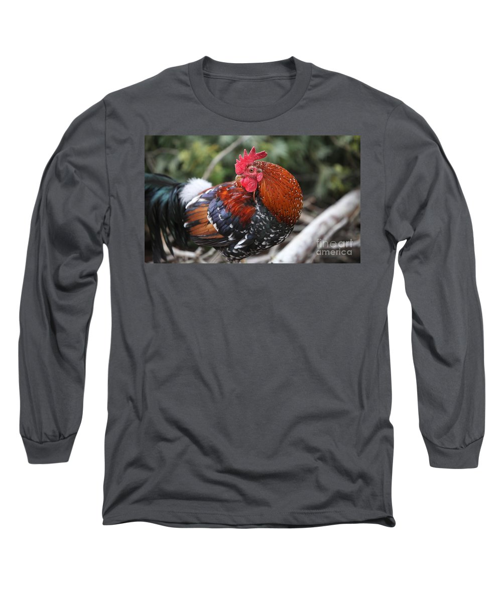 Rooster Long Sleeve T-Shirt featuring the photograph Kauai Rooster by Nadine Rippelmeyer