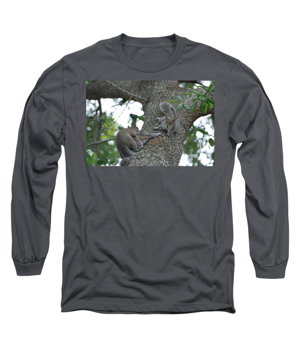 Squirrel Long Sleeve T-Shirt featuring the photograph Luck Be A Lady by Rob Hans