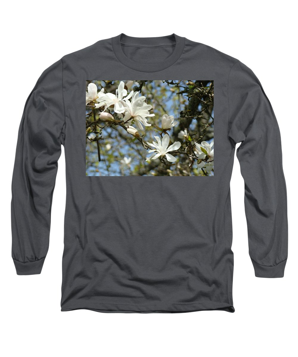 Magnolia Long Sleeve T-Shirt featuring the photograph Office Art Prints Magnolia Tree Flowers Landscape 15 Giclee Prints Baslee Troutman by Baslee Troutman
