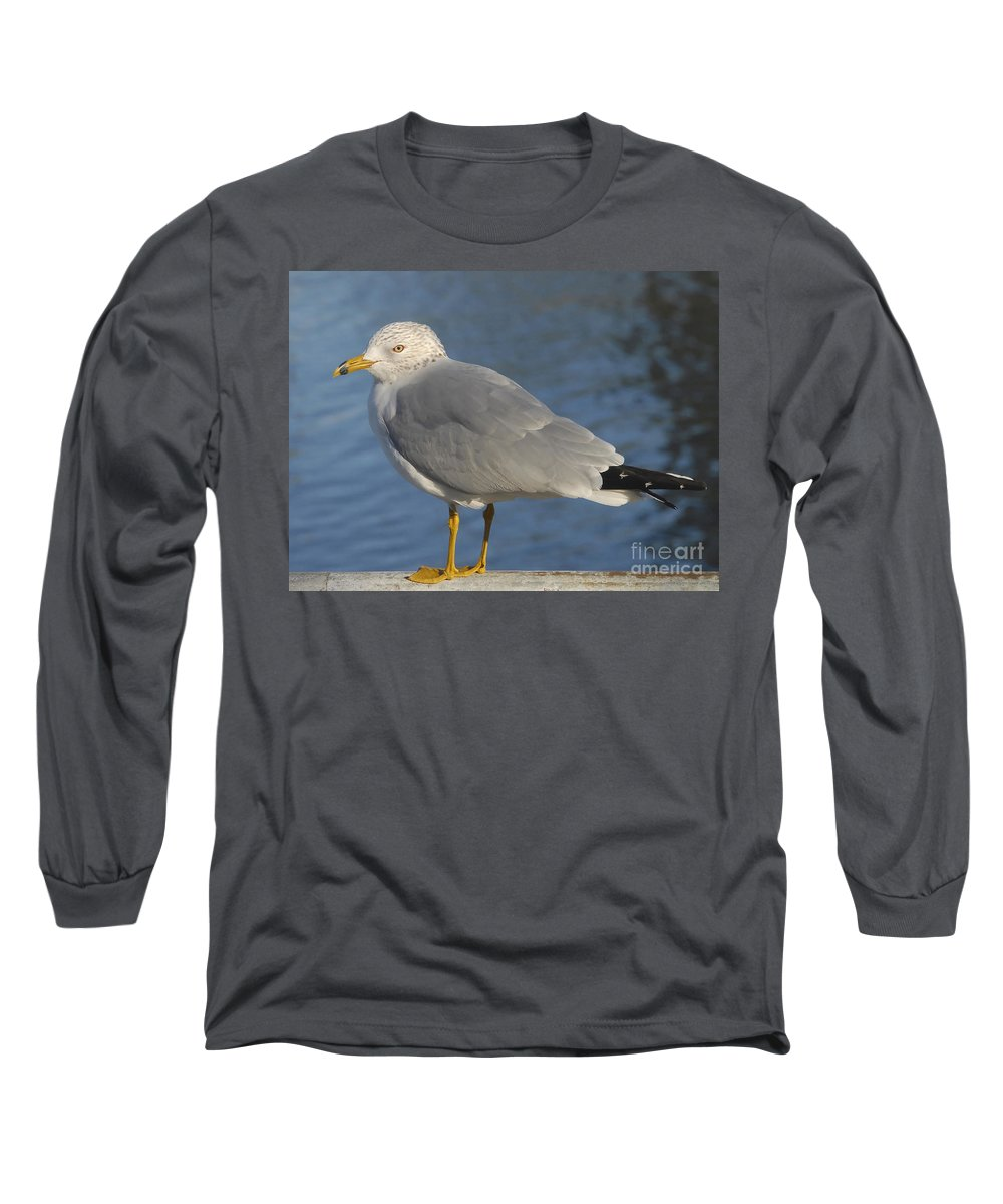 Seagull Long Sleeve T-Shirt featuring the photograph Seagull by David Lee Thompson