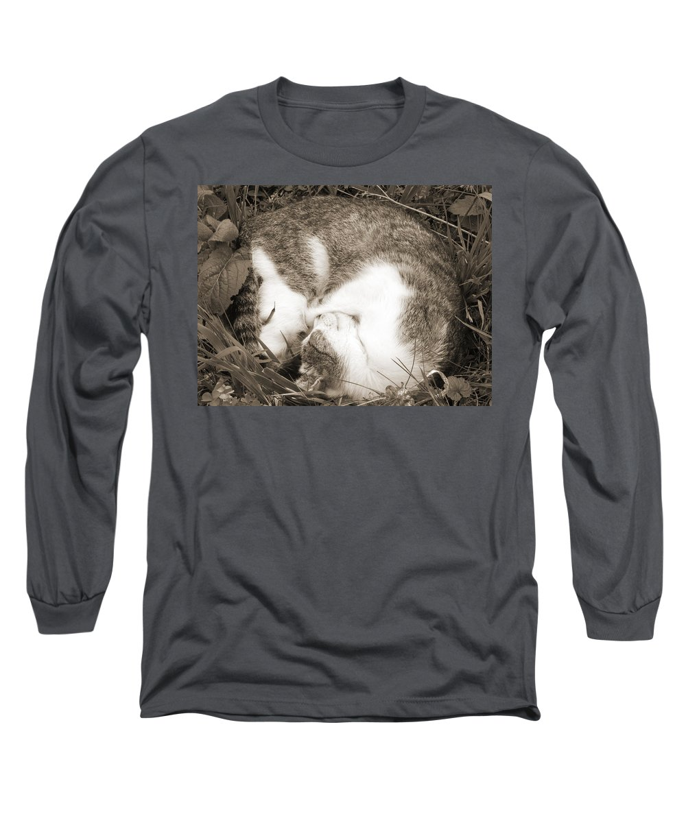 Pets Long Sleeve T-Shirt featuring the photograph Sleeping by Daniel Csoka