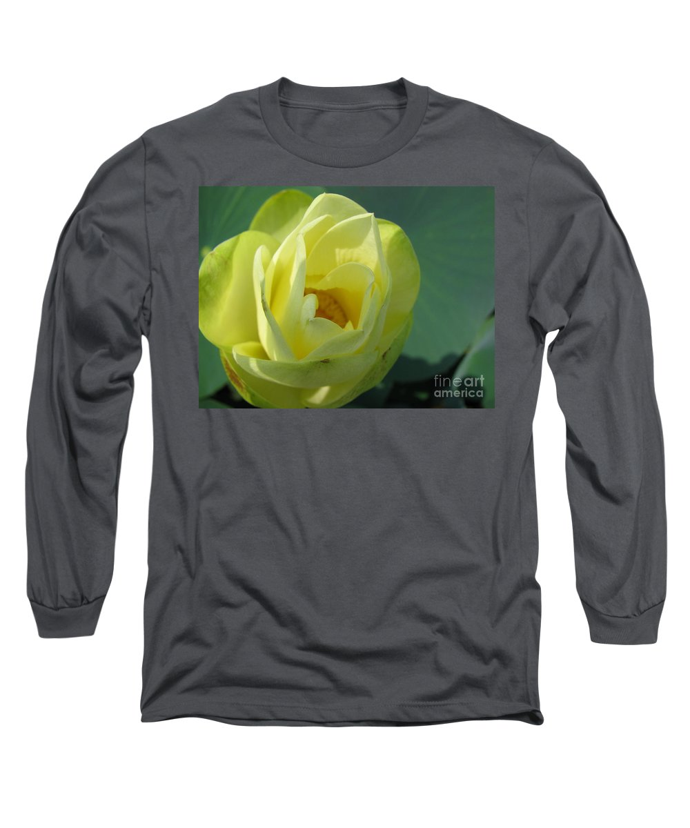 Lotus Long Sleeve T-Shirt featuring the photograph Softly by Amanda Barcon