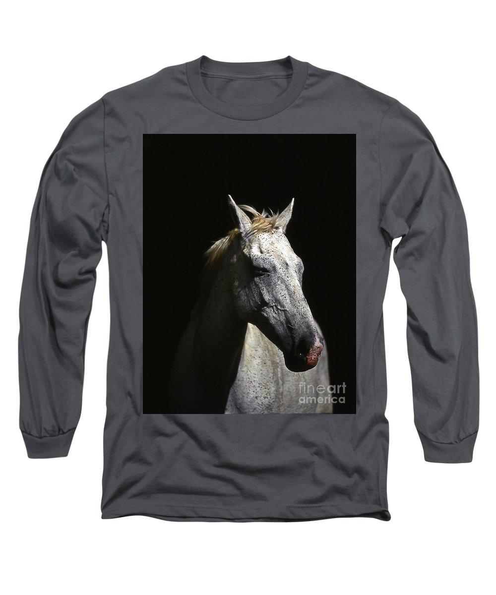 Horse Long Sleeve T-Shirt featuring the photograph Sundance by Jim Cazel