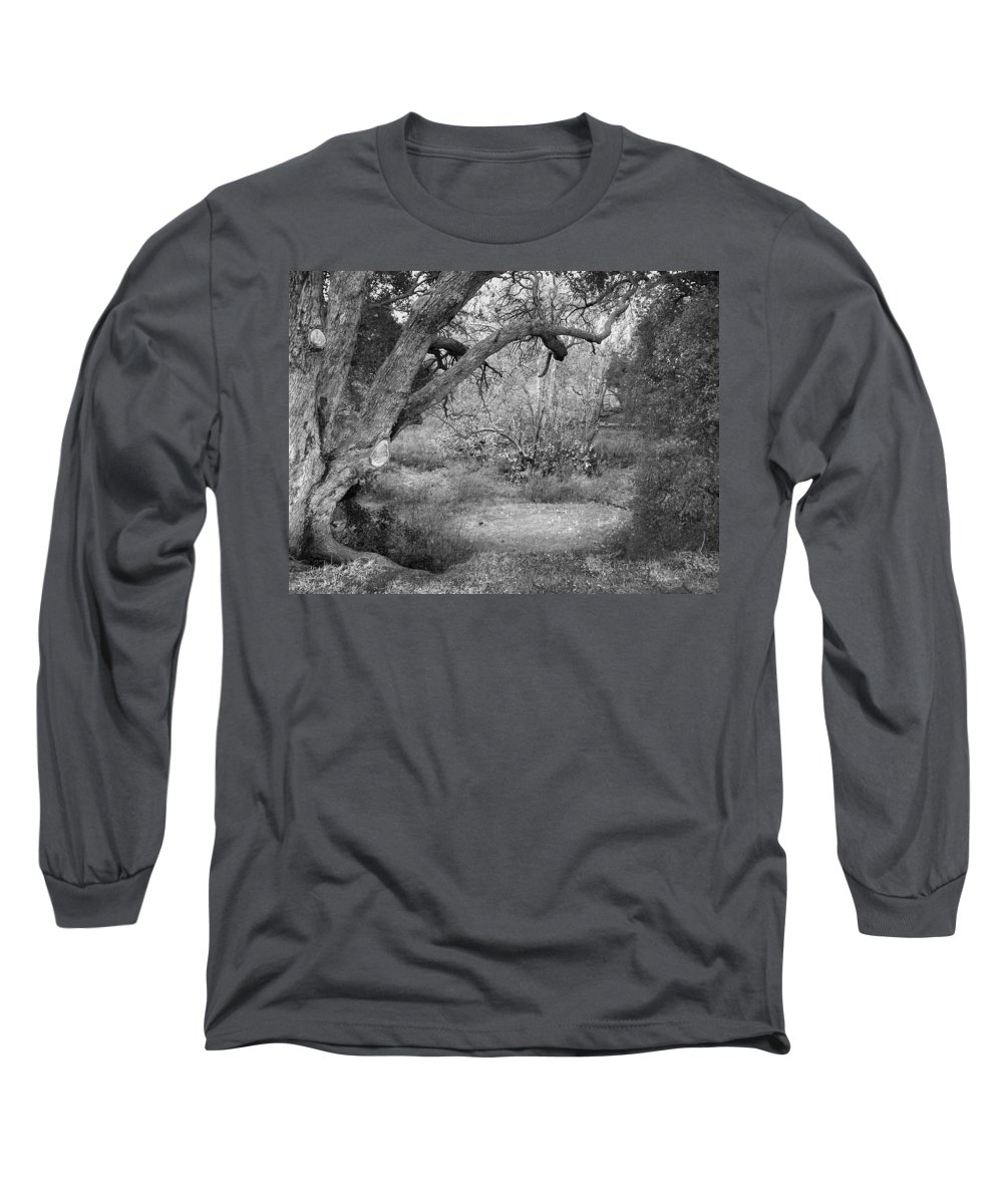 Landscape Long Sleeve T-Shirt featuring the photograph Sycamore Grove Black And White by Karen W Meyer