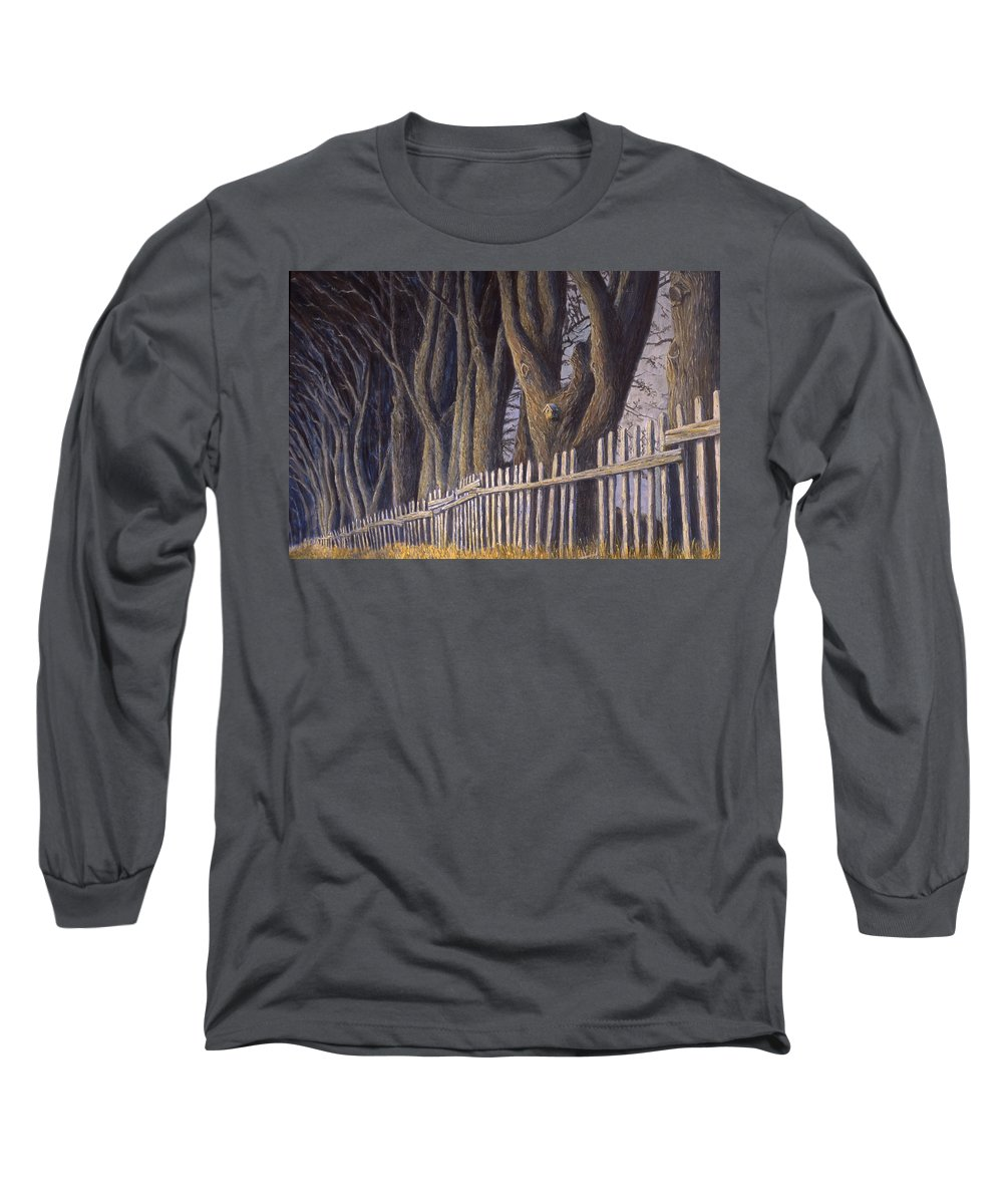 Bird House Long Sleeve T-Shirt featuring the painting The Bird House by Jerry McElroy