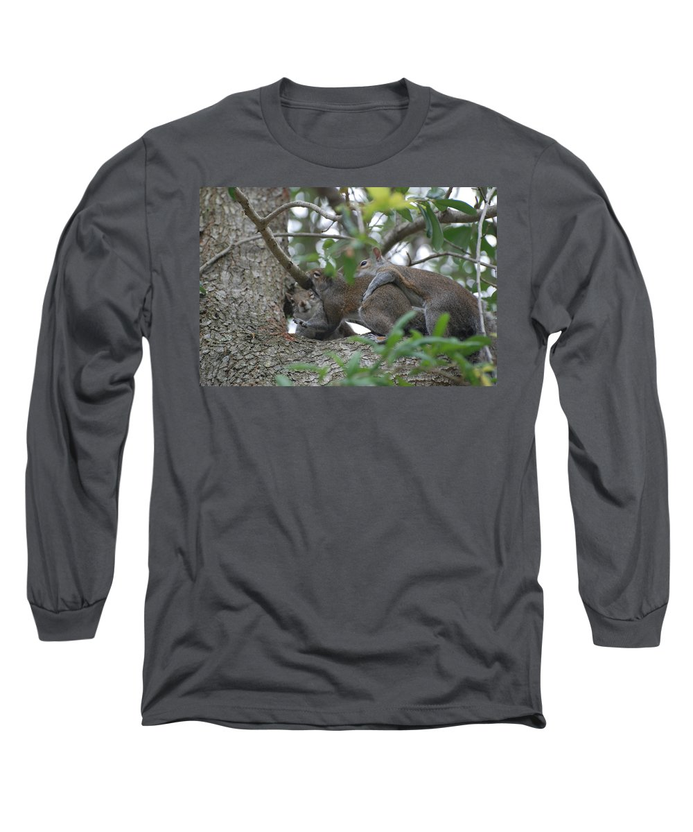 Squirrels Long Sleeve T-Shirt featuring the photograph The Fight For Life by Rob Hans