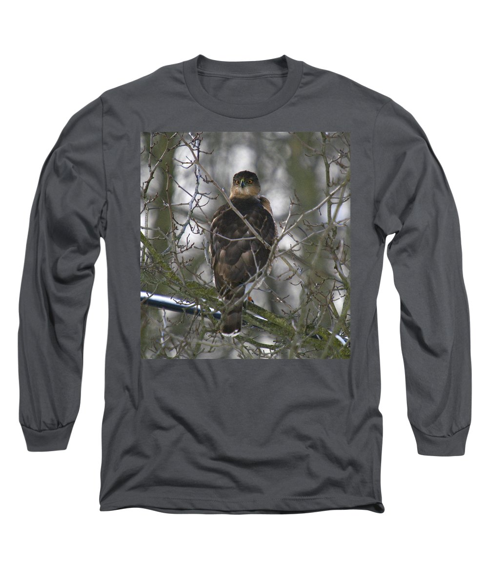 Bird Long Sleeve T-Shirt featuring the photograph The Hawks Have Eyes by Robert Pearson