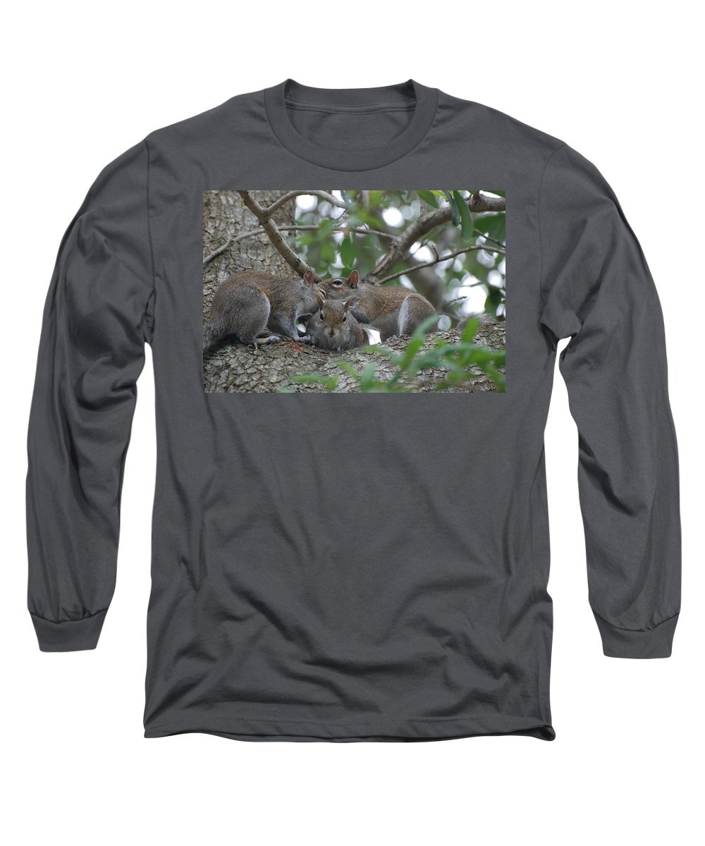 Squirrel Long Sleeve T-Shirt featuring the photograph Why Me by Rob Hans