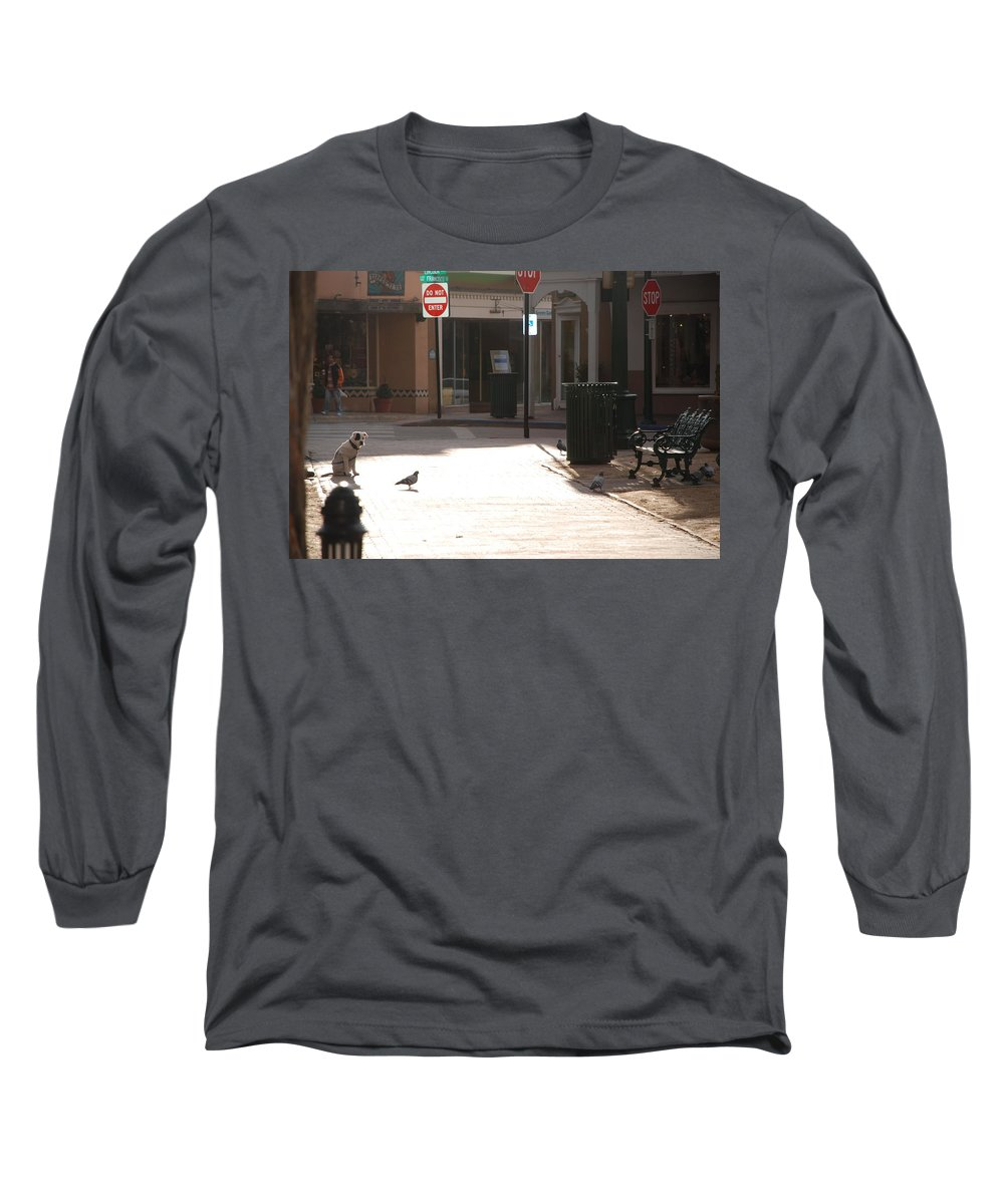 Dog Long Sleeve T-Shirt featuring the photograph Why Question Mark by Rob Hans
