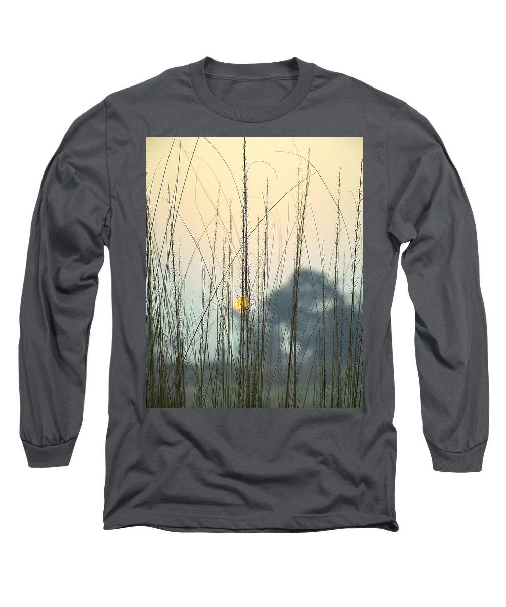 Grass Long Sleeve T-Shirts