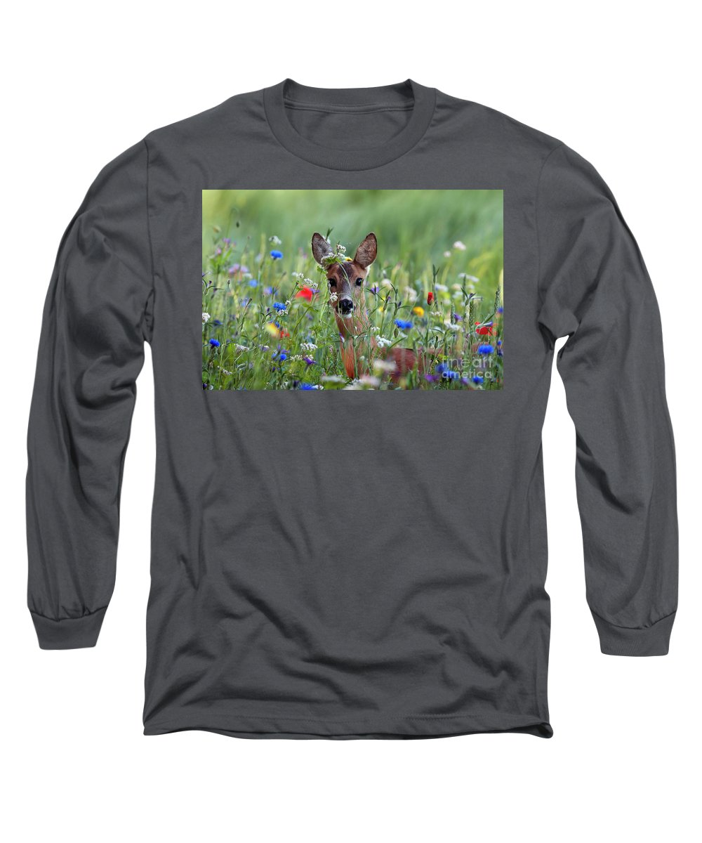 00540443 Long Sleeve T-Shirt featuring the photograph Roe Deer Amid Wildflowers by Ronald Stiefelhagen