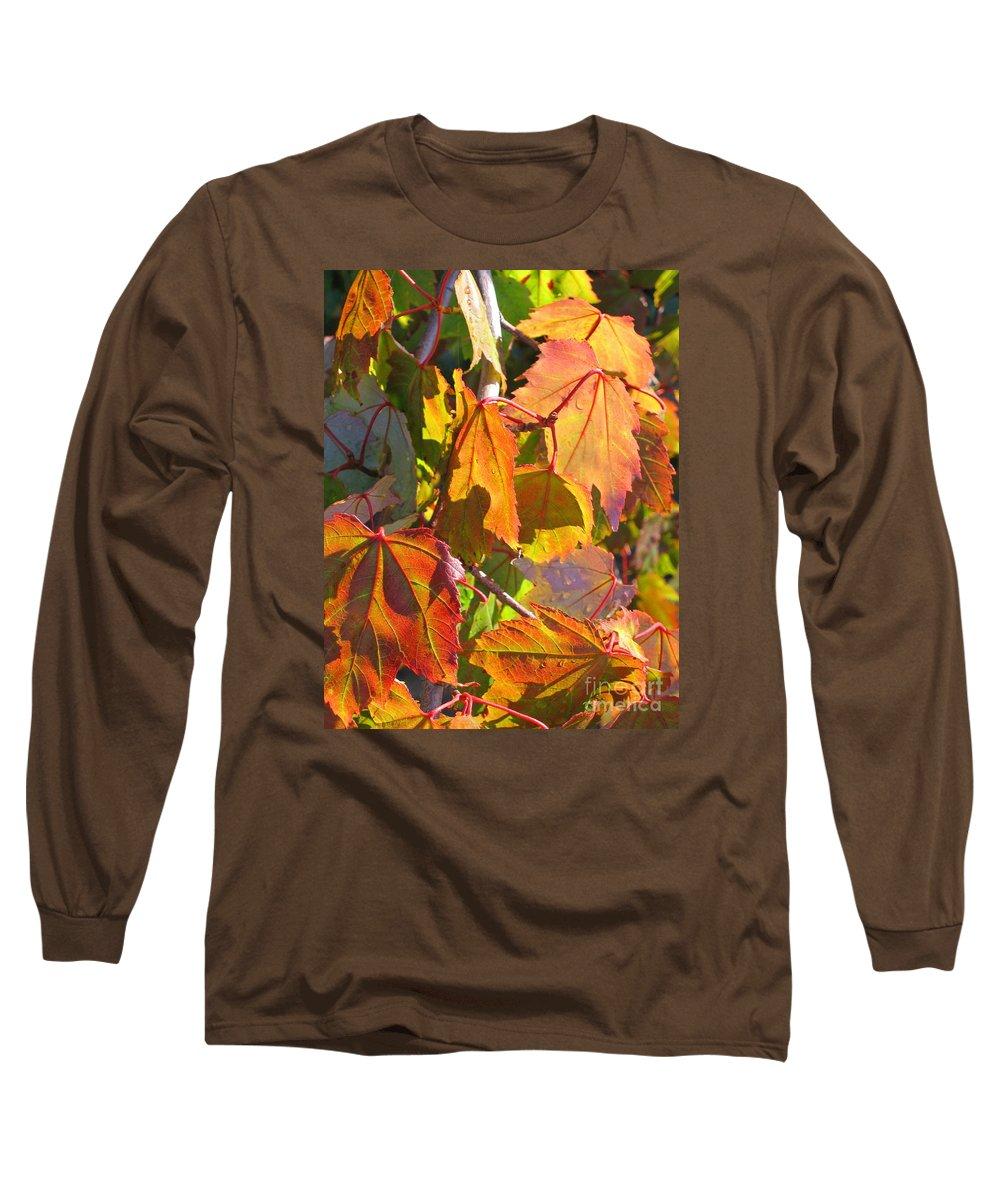Autumn Long Sleeve T-Shirt featuring the photograph Illumining Autumn by Ann Horn