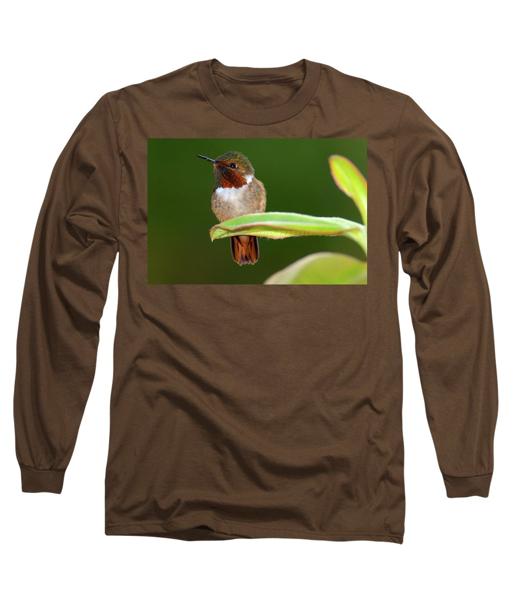 Selasphorus Photographs Long Sleeve T-Shirts
