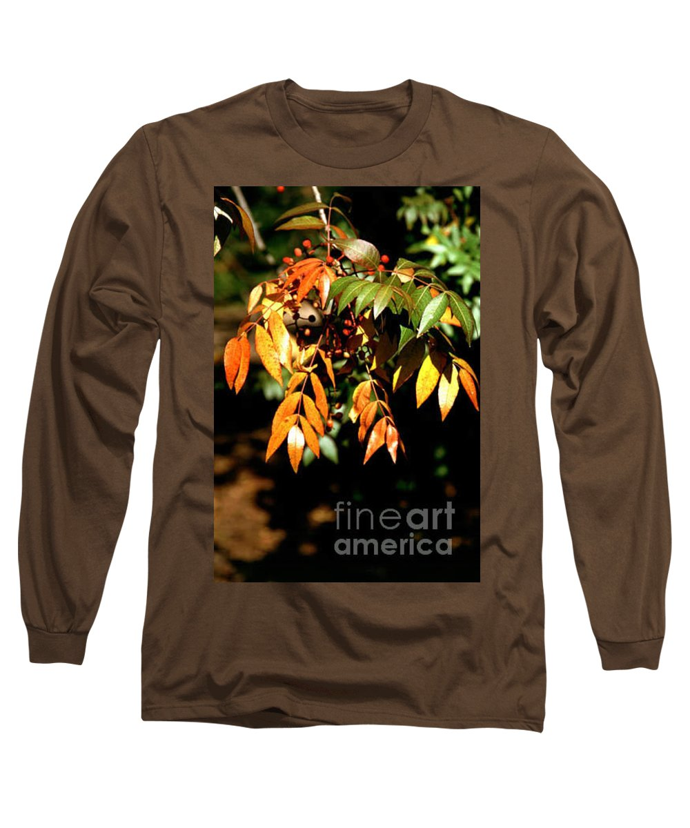 Fall Color Long Sleeve T-Shirt featuring the photograph Fall Leaves by Kathy McClure