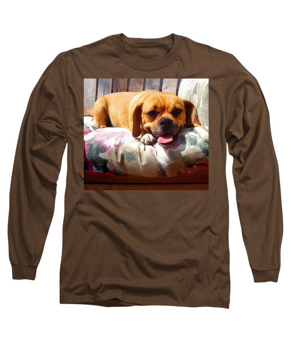 Animal Long Sleeve T-Shirt featuring the painting Puggle Lounging by Amy Vangsgard