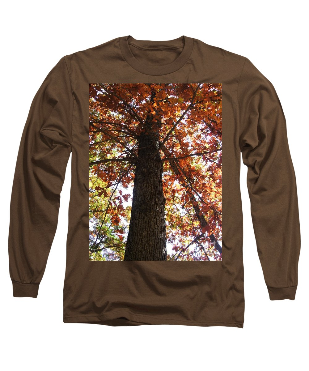 Tree Long Sleeve T-Shirt featuring the photograph Up Fall by Minding My Visions by Adri and Ray