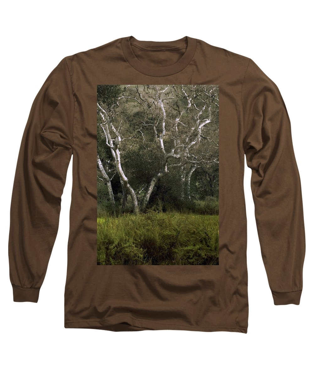 Tree Long Sleeve T-Shirt featuring the photograph Dv Creek Trees by Karen W Meyer