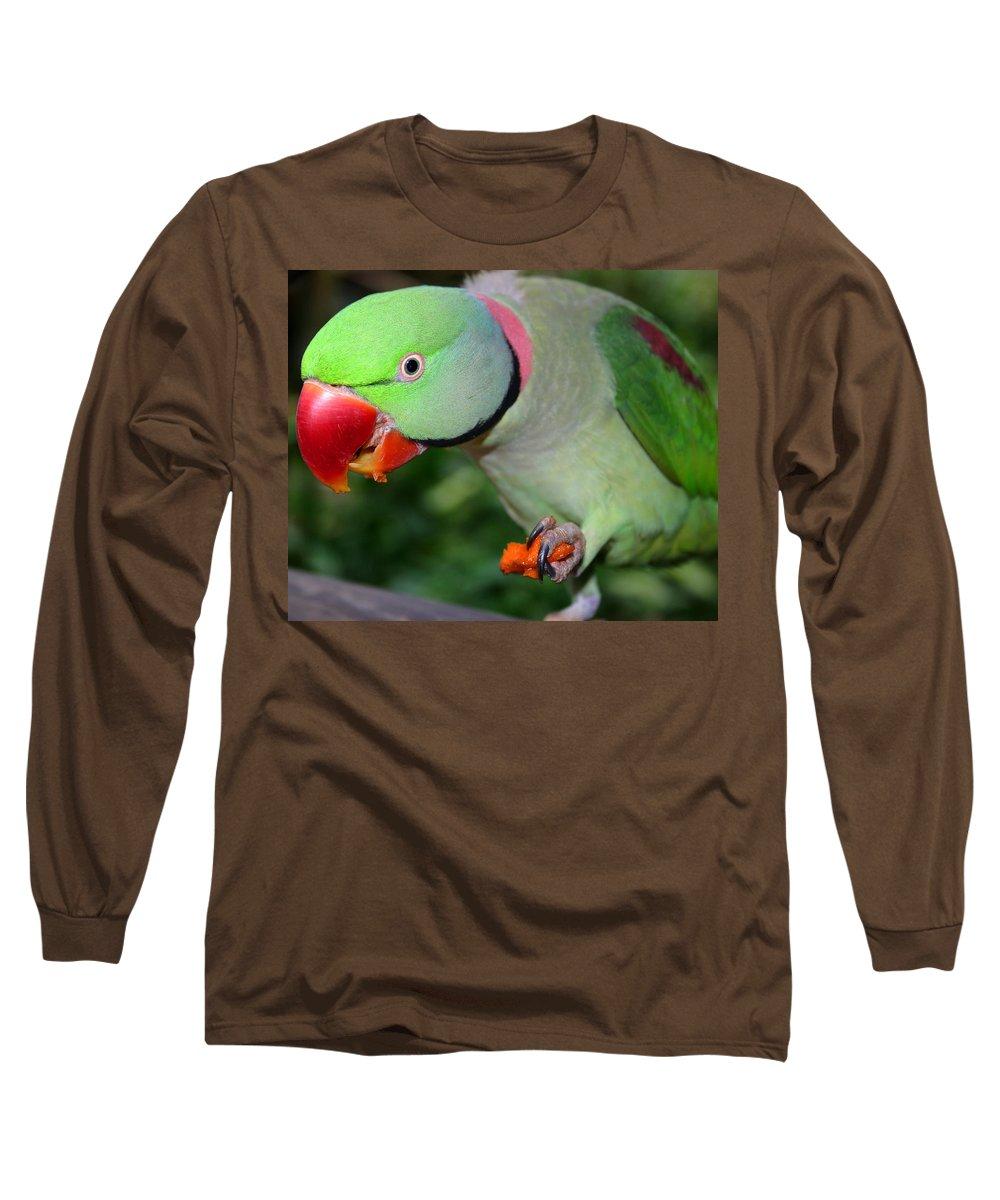 Alexandrine Parrot Long Sleeve T-Shirt featuring the photograph Alexandrine Parrot Feeding by Ralph A Ledergerber-Photography