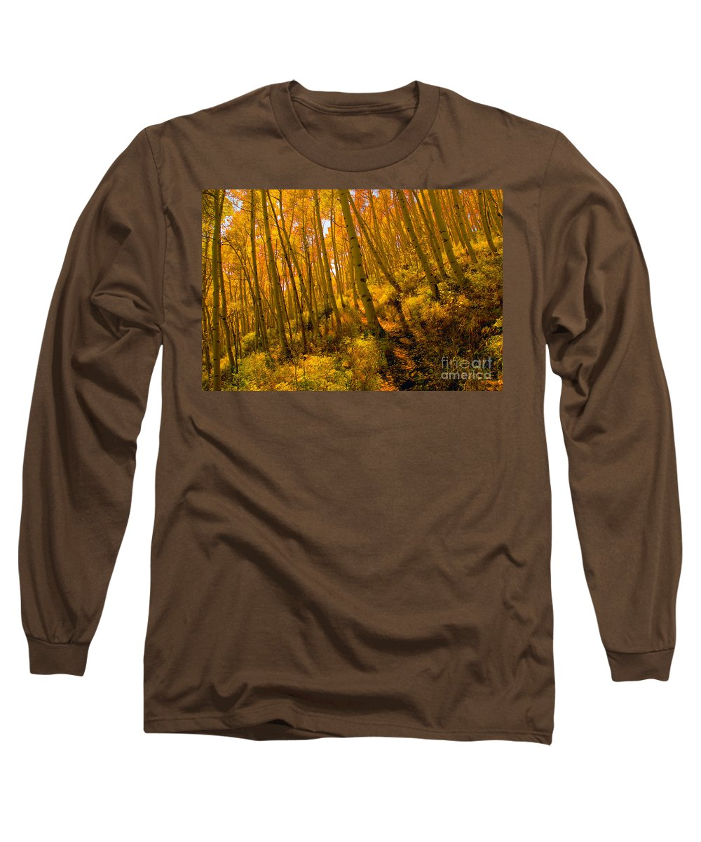 Autumn Long Sleeve T-Shirt featuring the photograph Autumn Trail by David Lee Thompson