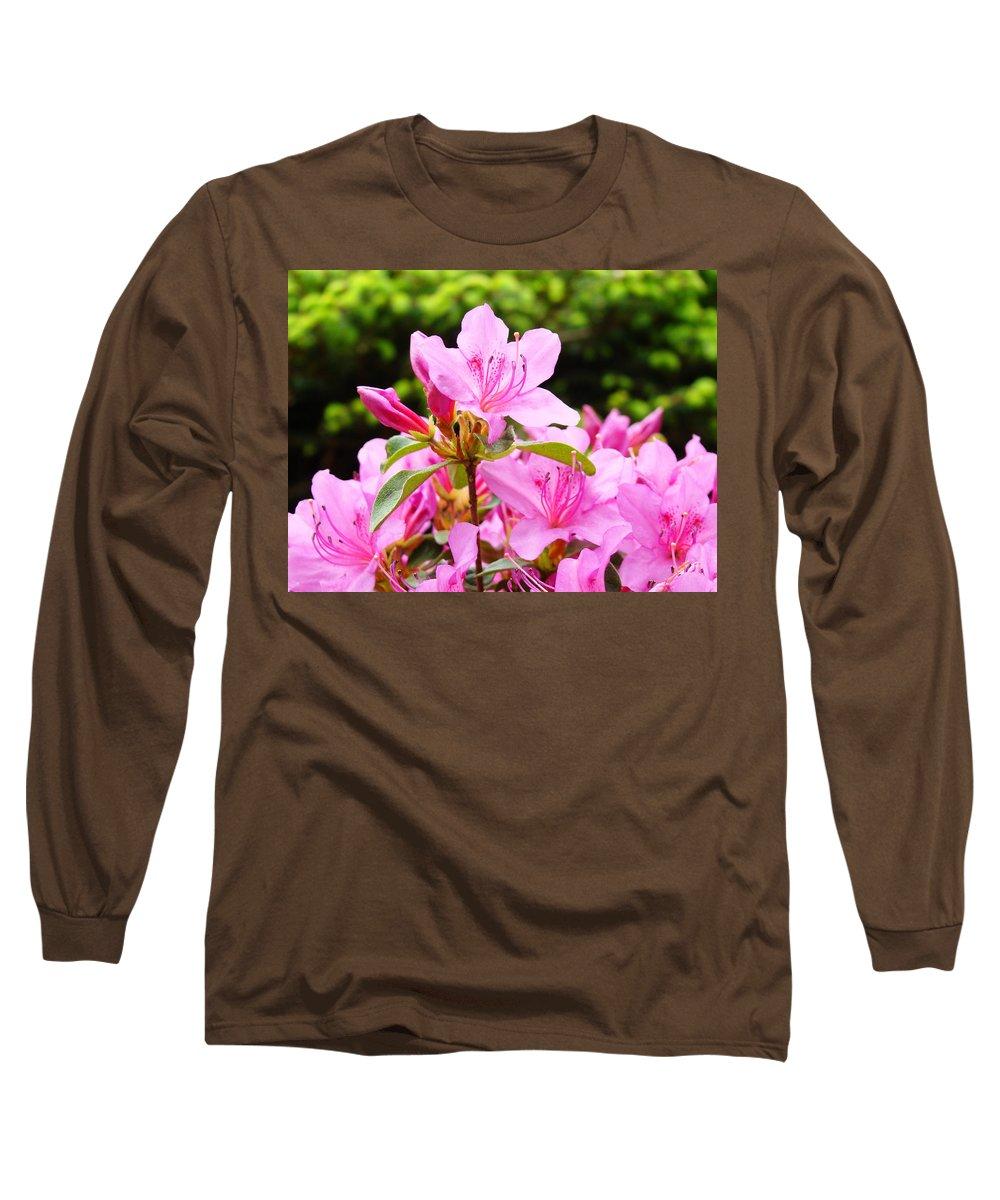 �azaleas Artwork� Long Sleeve T-Shirt featuring the photograph Azaleas Pink Azalea Flowers Artwork 12 Landscape Art Prints by Baslee Troutman