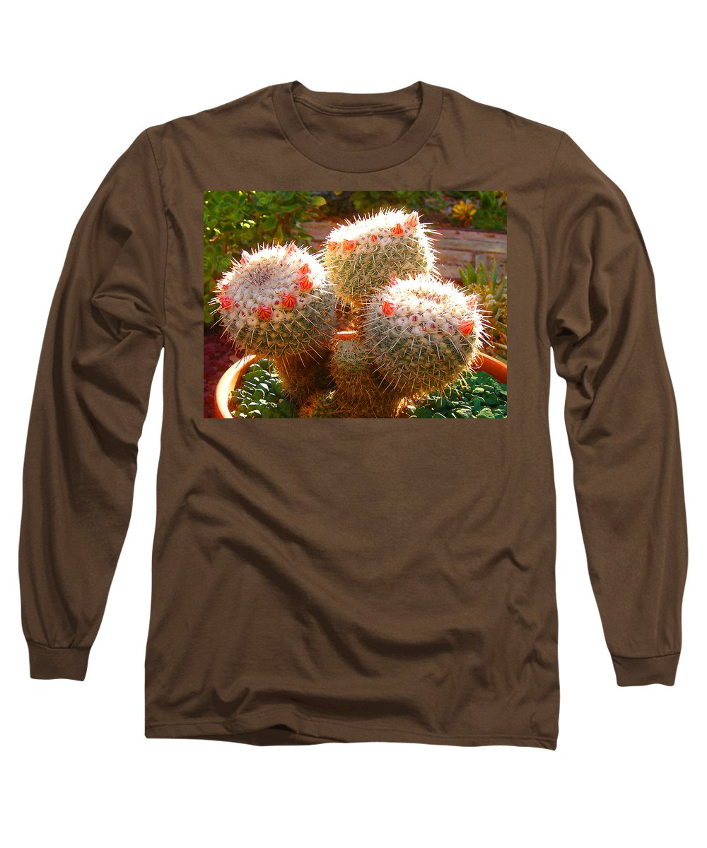 Landscape Long Sleeve T-Shirt featuring the photograph Cactus Buds by Amy Vangsgard