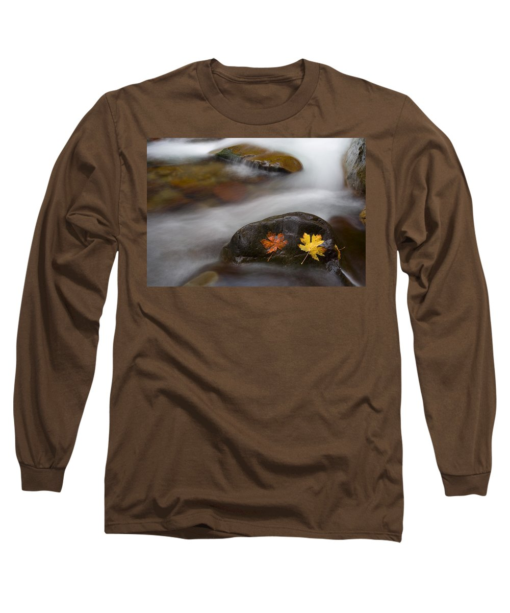 Leaves Long Sleeve T-Shirt featuring the photograph Castaways by Mike Dawson