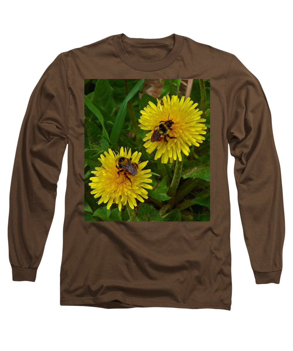 Dandelion Long Sleeve T-Shirt featuring the photograph Dandelions And Bees by Heather Coen