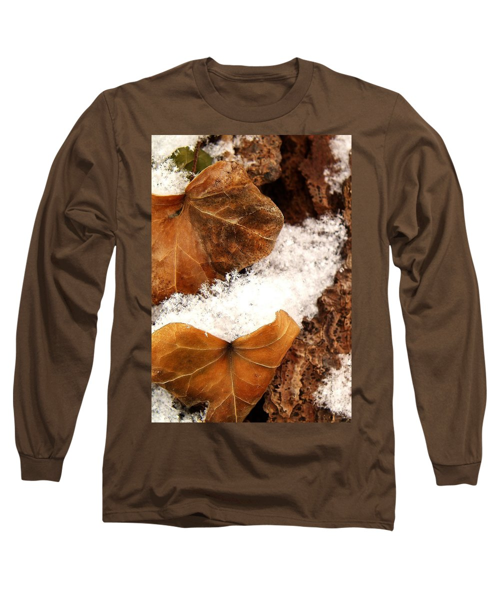 Fall Long Sleeve T-Shirt featuring the photograph Fall And Winter by Gaby Swanson