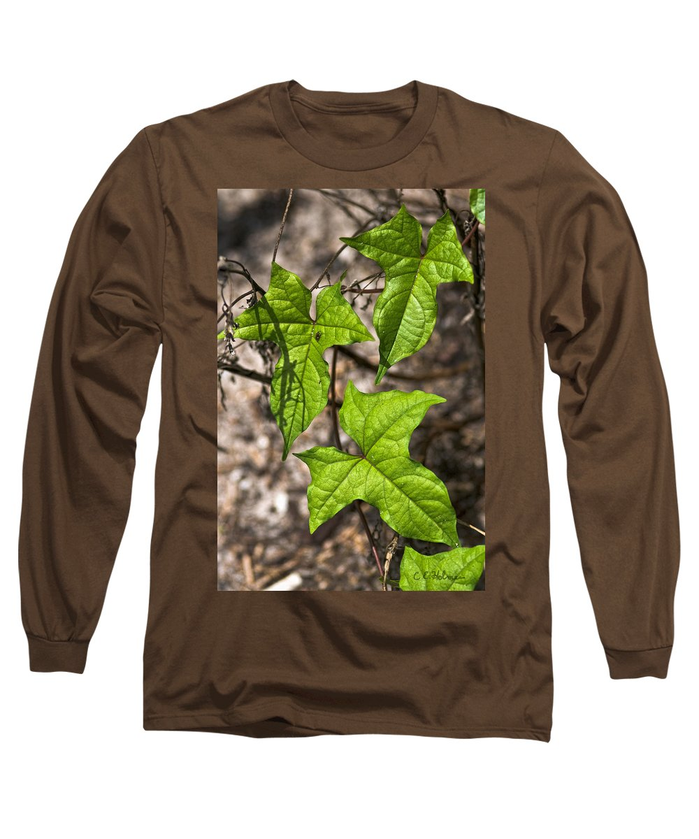 Green Long Sleeve T-Shirt featuring the photograph Green Arrowheads by Christopher Holmes