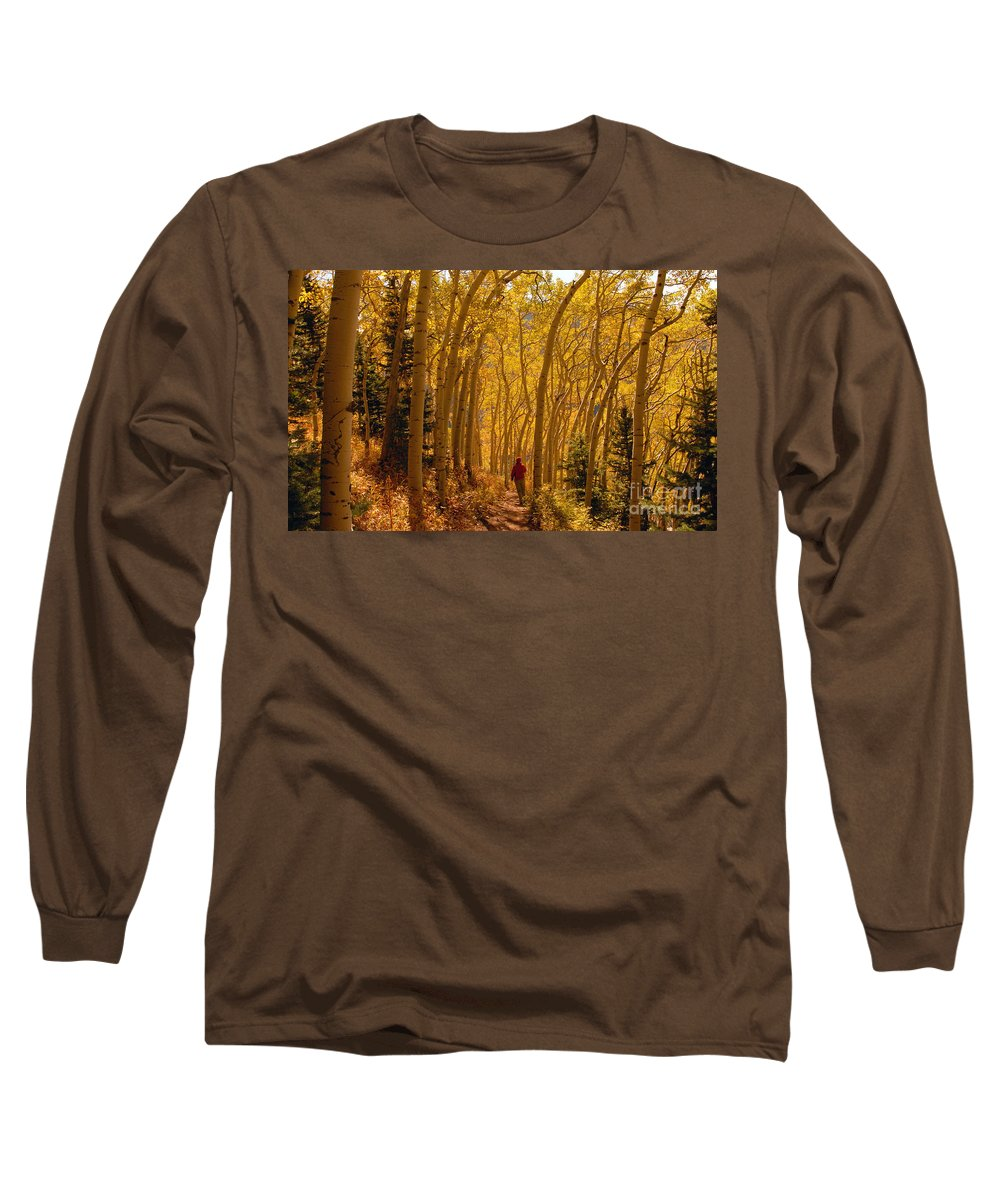 Fall Long Sleeve T-Shirt featuring the photograph Hiking In Fall Aspens by David Lee Thompson