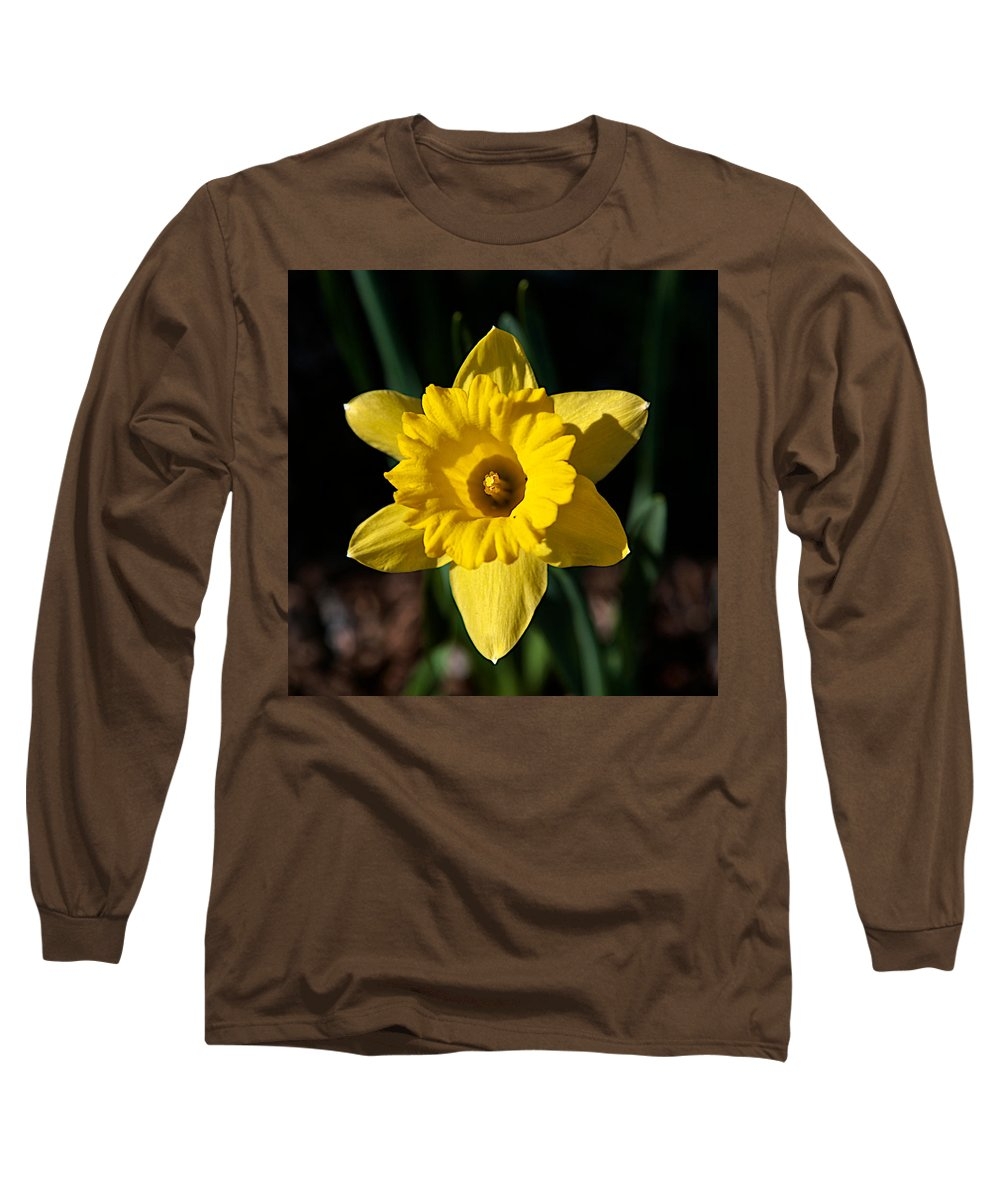 Flower Long Sleeve T-Shirt featuring the photograph In All Its Glory by Robert Pearson