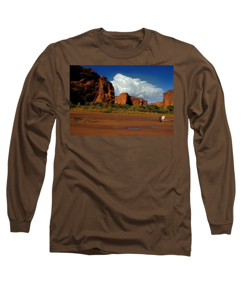 Horses Long Sleeve T-Shirt featuring the photograph Indian Ponies In The Canyon by Jerry McElroy