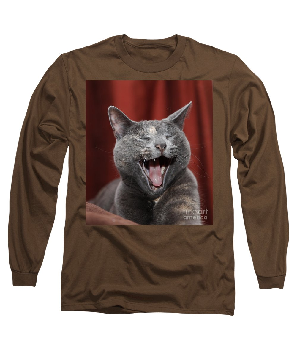 Kitty Long Sleeve T-Shirt featuring the photograph Laughing Kitty by Amanda Barcon