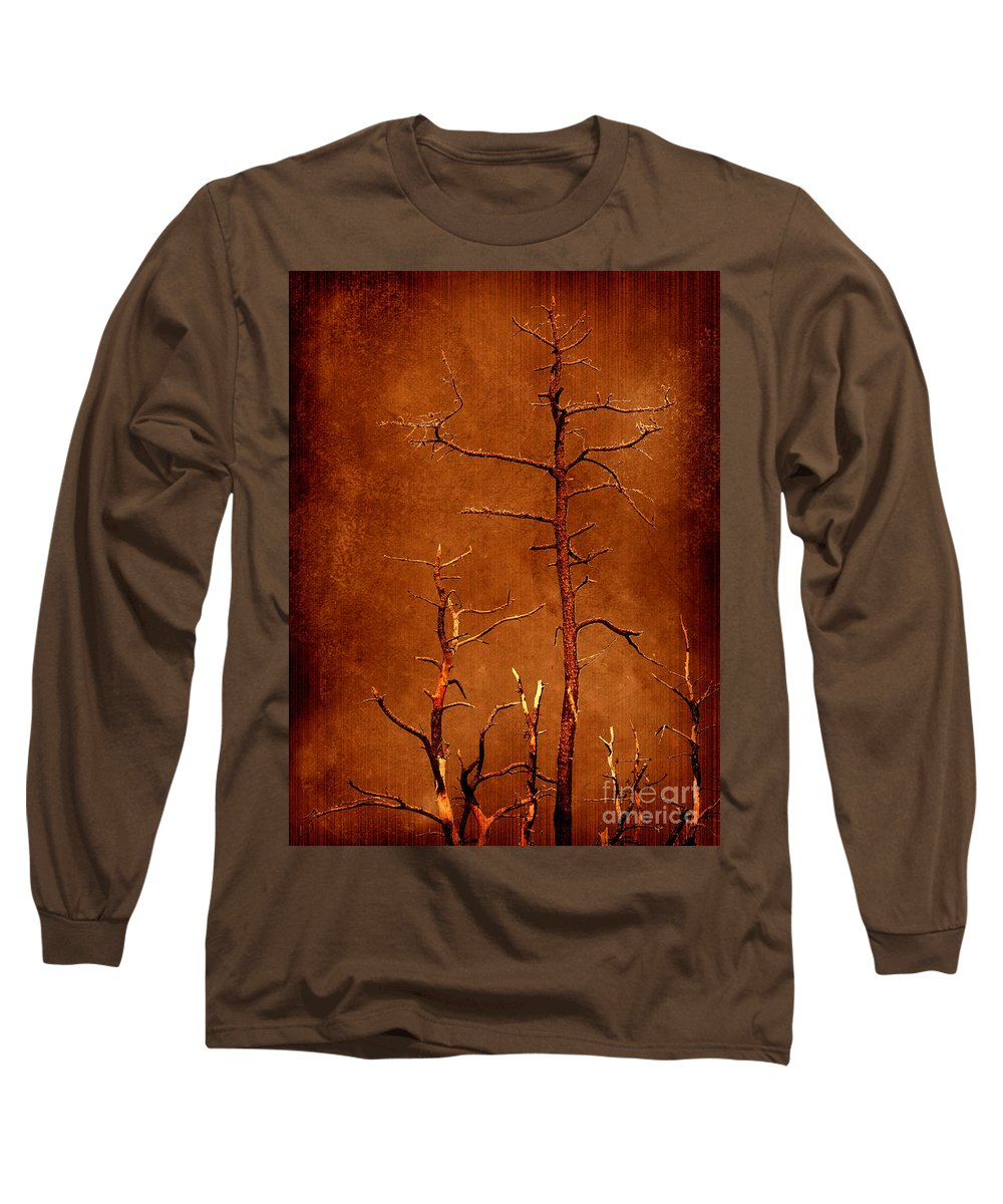 Dipasquale Long Sleeve T-Shirt featuring the photograph Left Bare And Broken by Dana DiPasquale