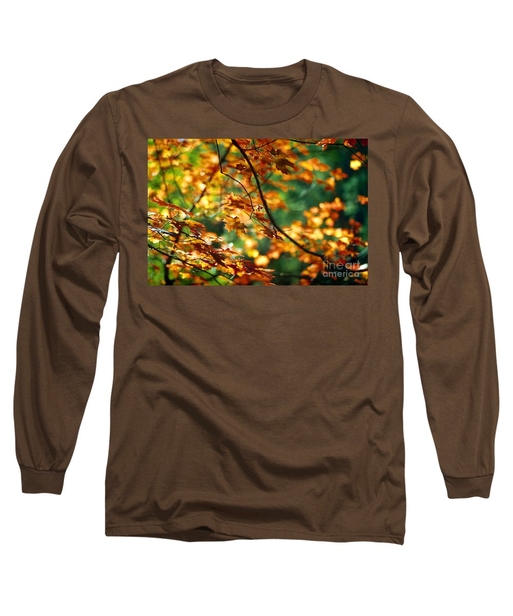 Fall Color Long Sleeve T-Shirt featuring the photograph Lost In Leaves by Kathy McClure