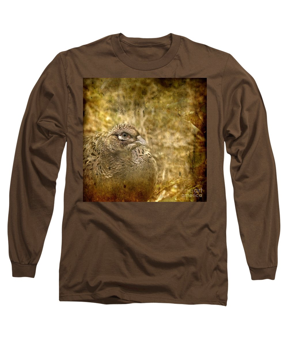 Pheasant Long Sleeve T-Shirt featuring the photograph Mrs Pheasant by Angel Tarantella