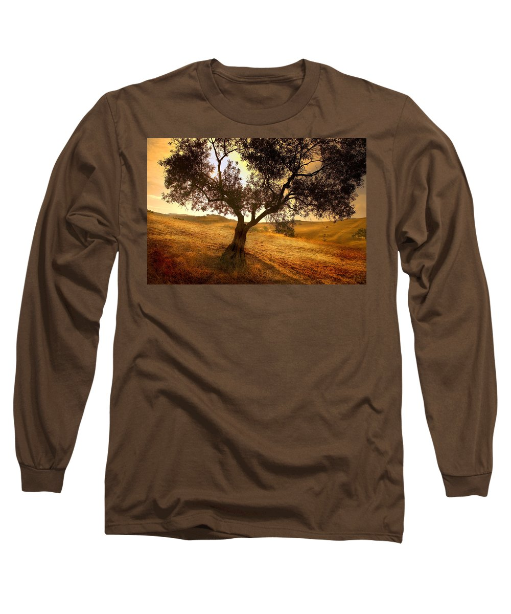 Landscape Long Sleeve T-Shirt featuring the photograph Olive Tree Dawn by Mal Bray